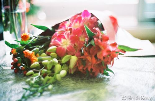 OM 1 フィルムで撮った写真 4