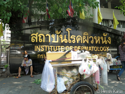 Institue of dermatology