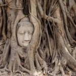 アユタヤ遺跡観光で、来タイした日本人をアテンドするときのボクの定番4寺院