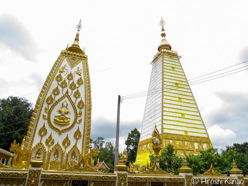 Wat nong bua 1