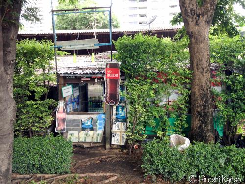 バンコク ベンジャキティ公園9