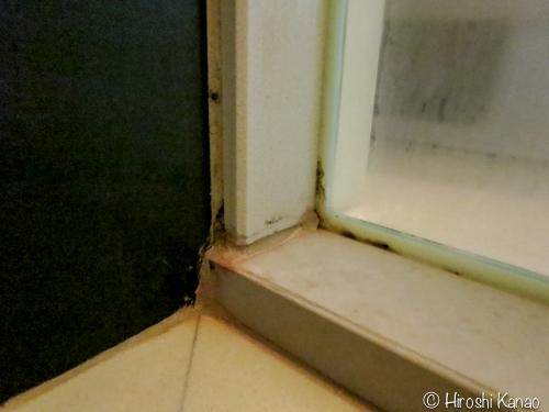 カビ取り 片栗粉 漂白剤4