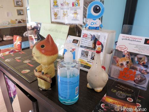 プーケット 猫カフェ b cat cafe 2