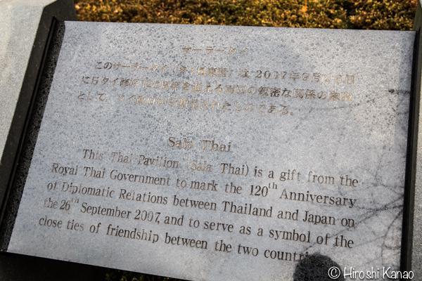タイから贈られたゾウ アティ ウタイ 上野動物園 4