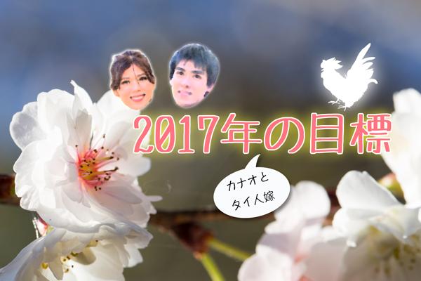 2017年の目標